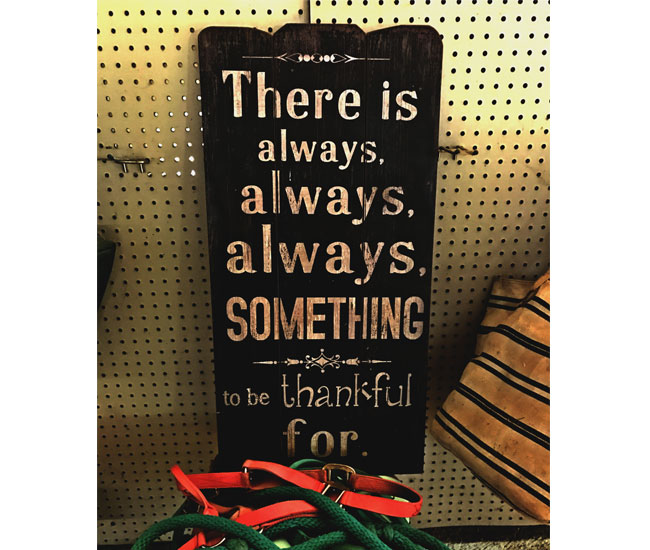 Sign in Selah's Barn that reads There is always, always, always, something to be thankful for